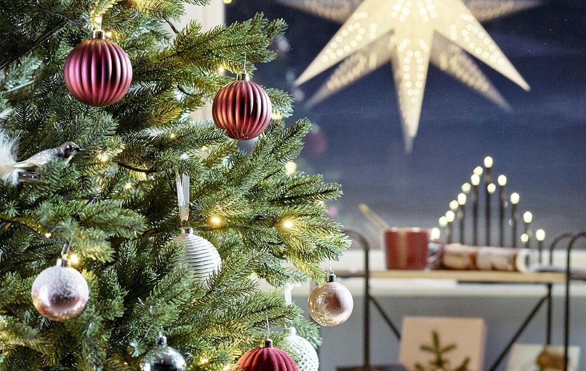 Hitta din julgran