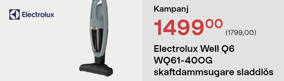 Electrolux Well Q6 WQ61-40OG skaftdammsugare sladdlös