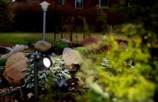Lys upp trädgården