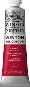 Winsor & Newton Winton Oil Colour Paint