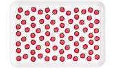 Bricka jordgubbar
