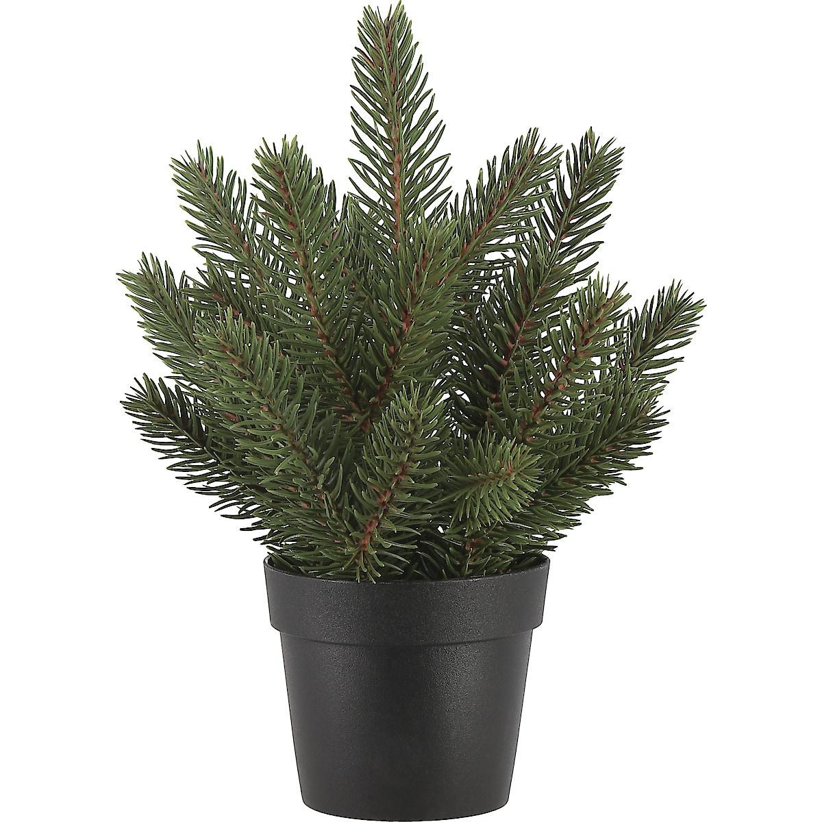 Tabletop Tree, 19 cm