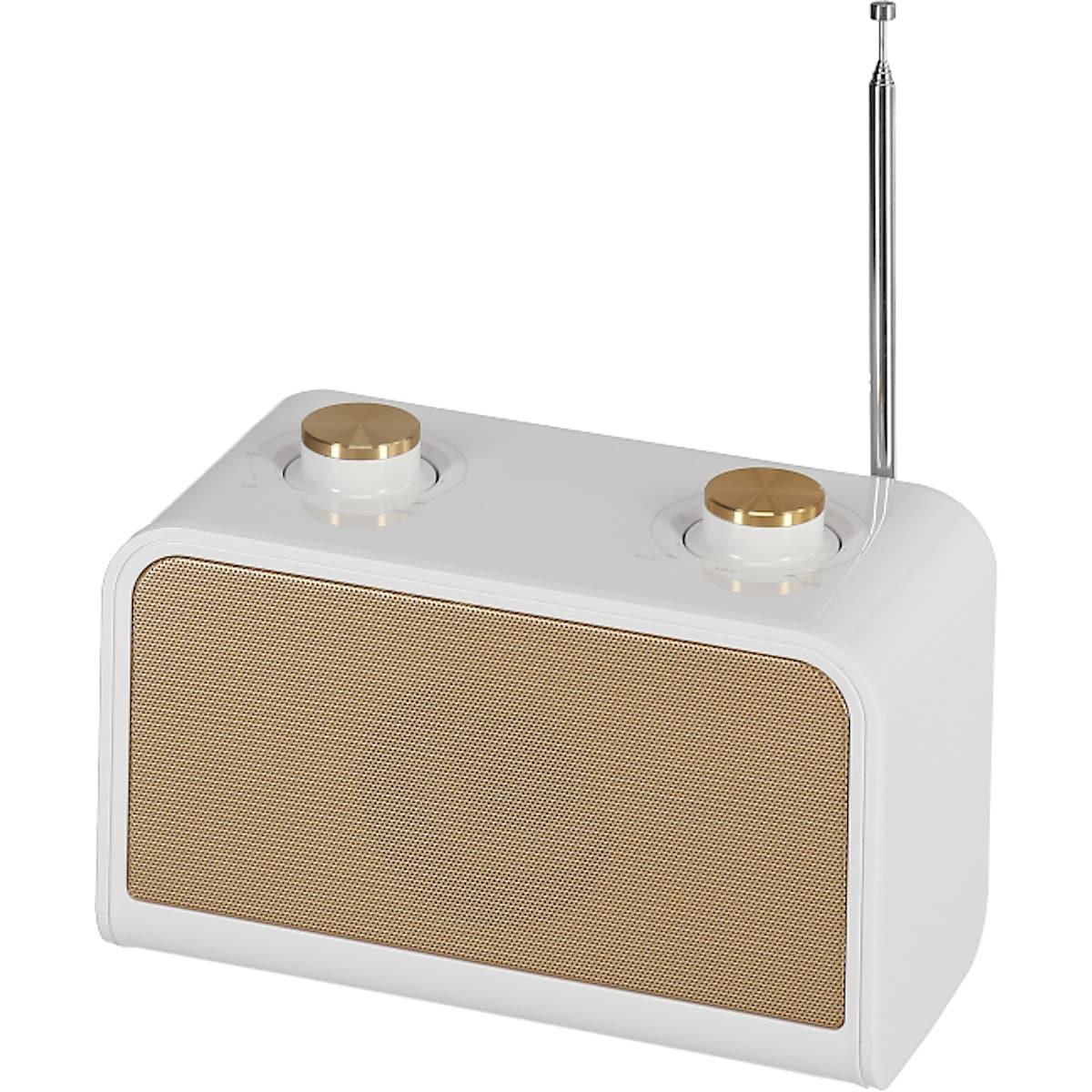 Speaker with FM Radio