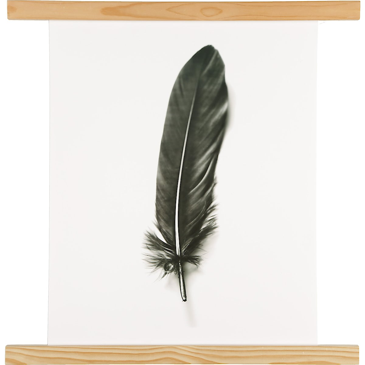 Affischlist furu 52 cm