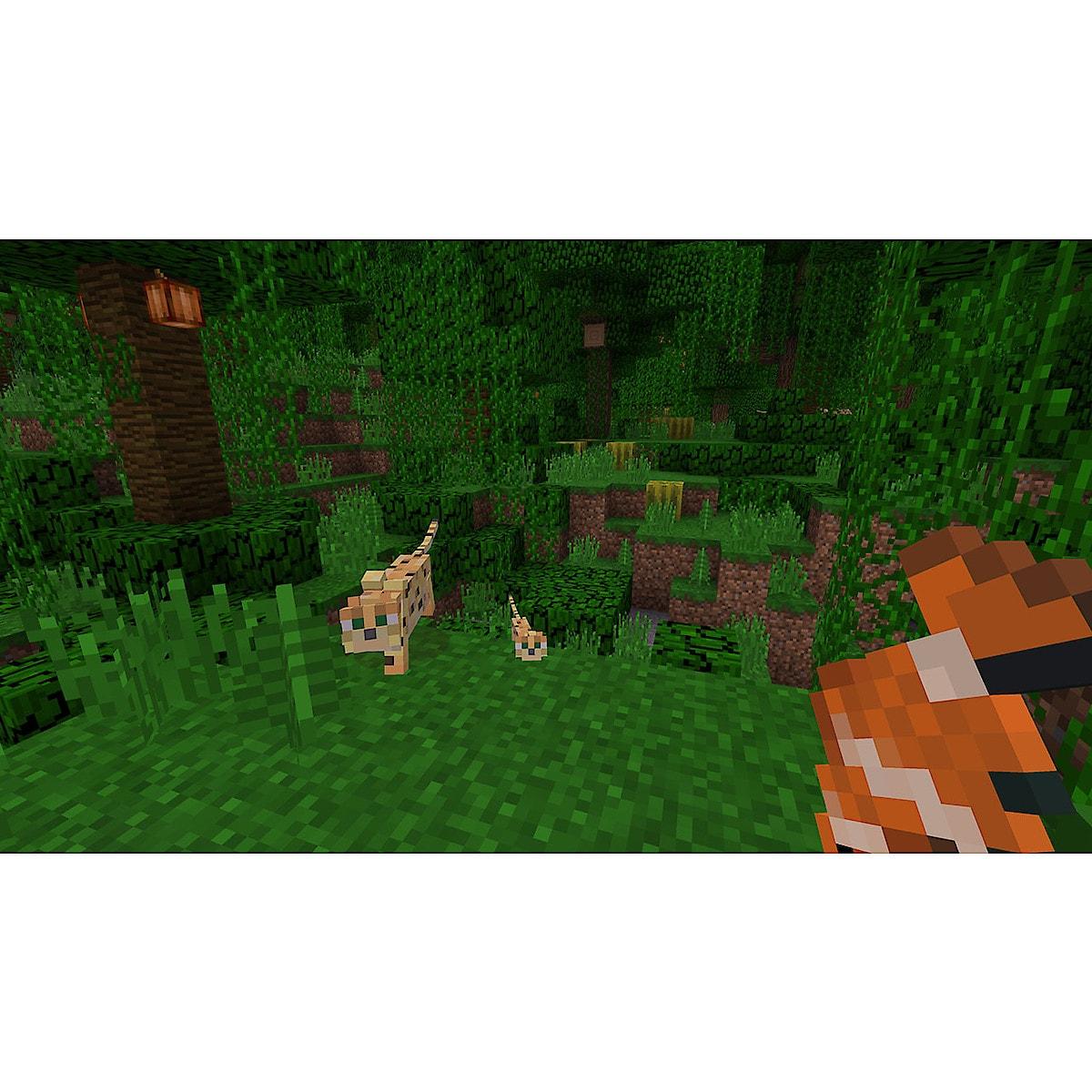 Minecraft, spill til Nintendo Switch