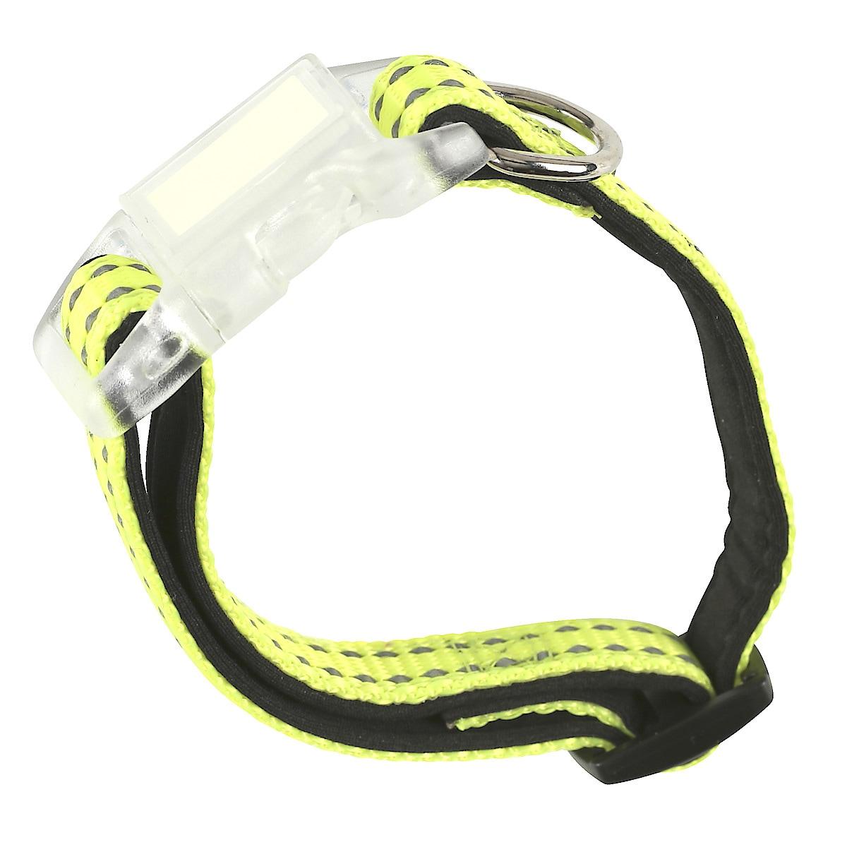 20–30 cm Dog Collar