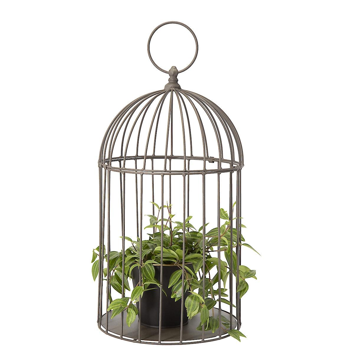 Fågelbur för dekoration