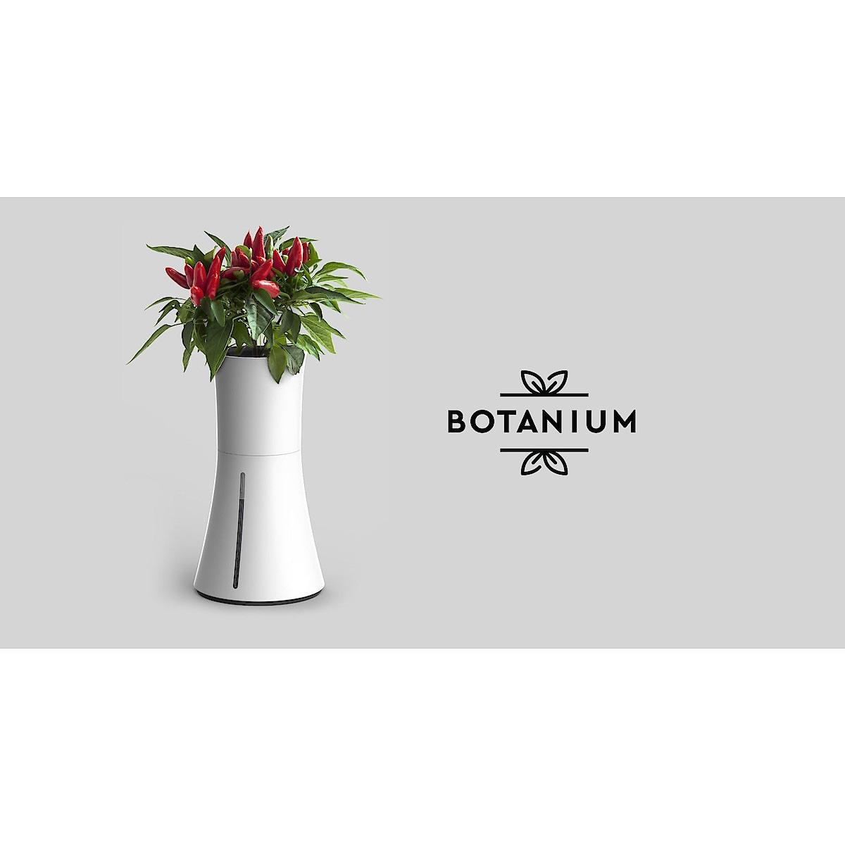 Odlingskruka Botanium