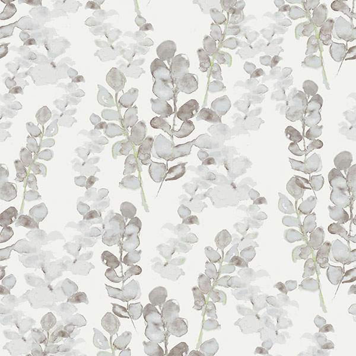 Tapet Eukalyptus