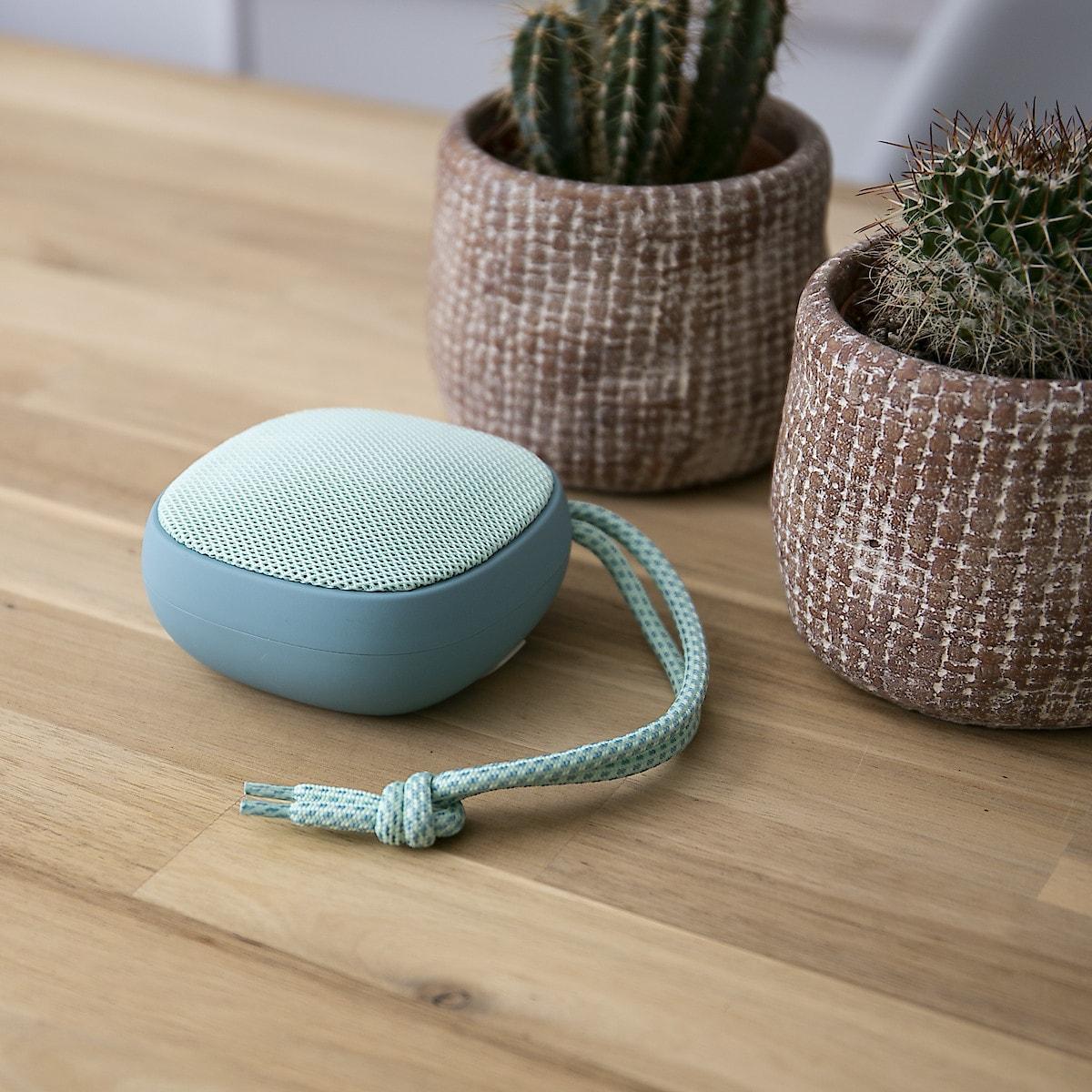 Flavr Wireless Bluetooth Speaker