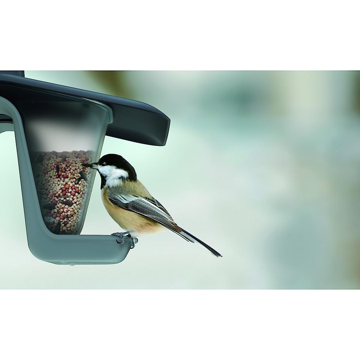 Dobbel fuglemater
