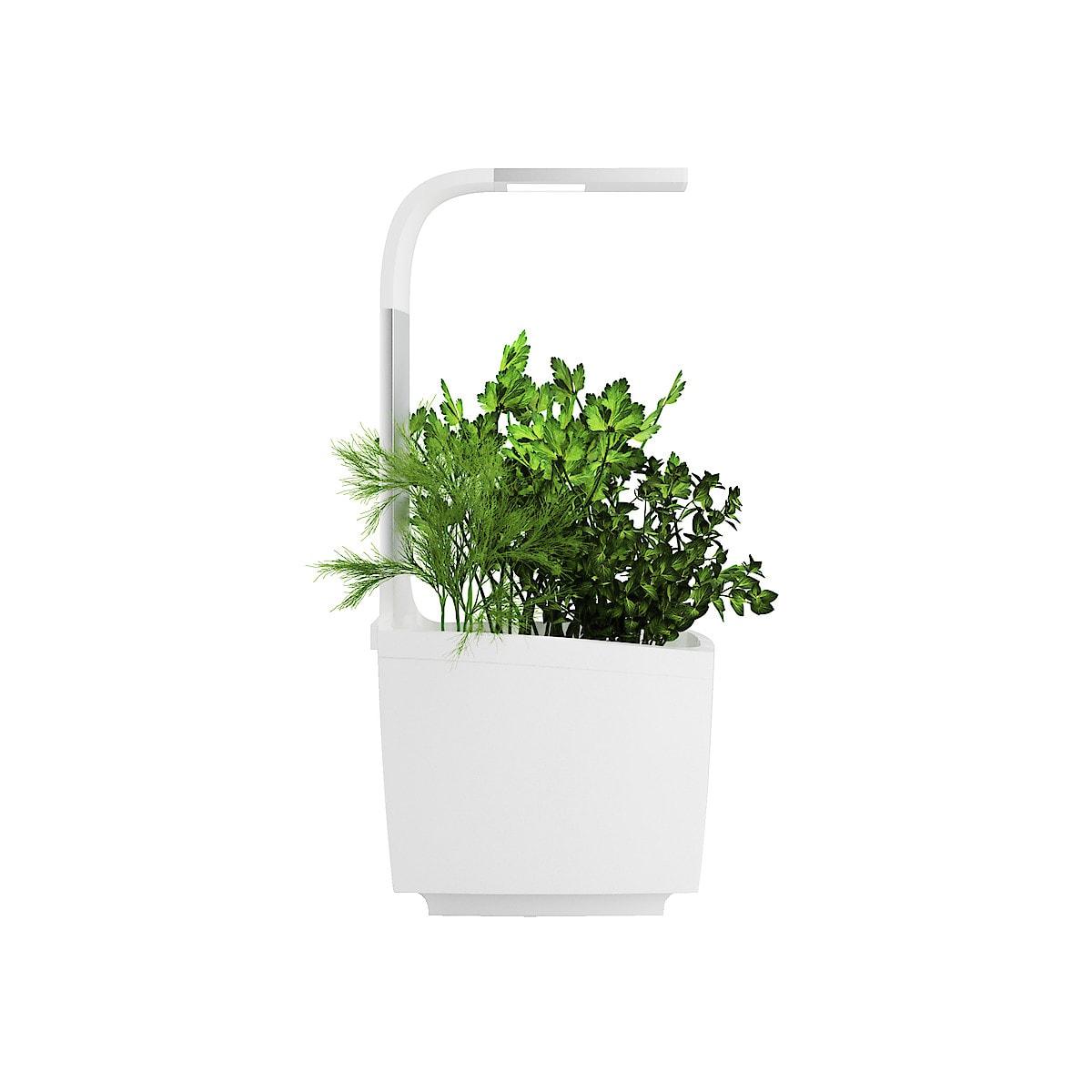 Tregren T3 Kitchen Garden plantekrukke med vekstlys