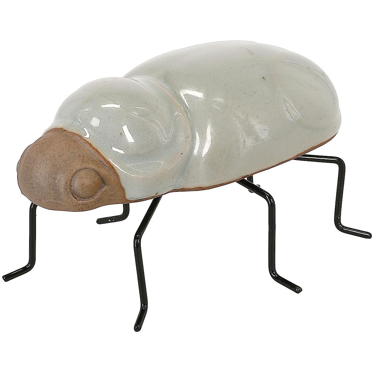 Koristehahmo Kovakuoriainen