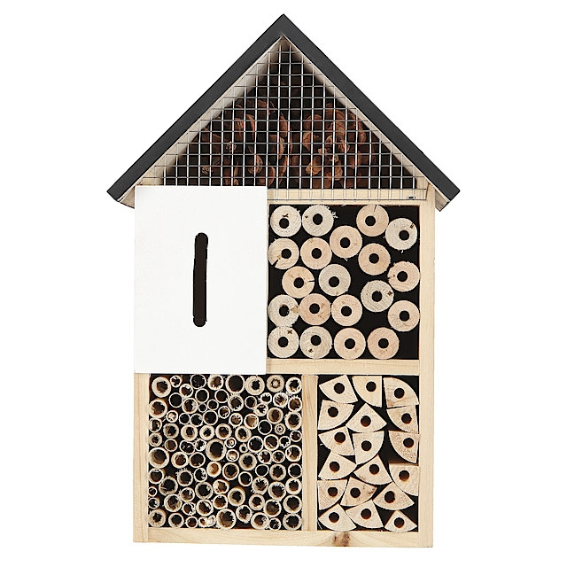 Placering av insektshotell
