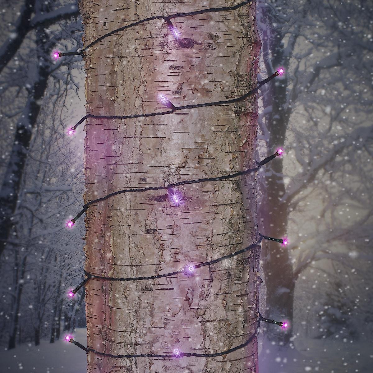 Multifärgad ljusslinga LED  Northlight