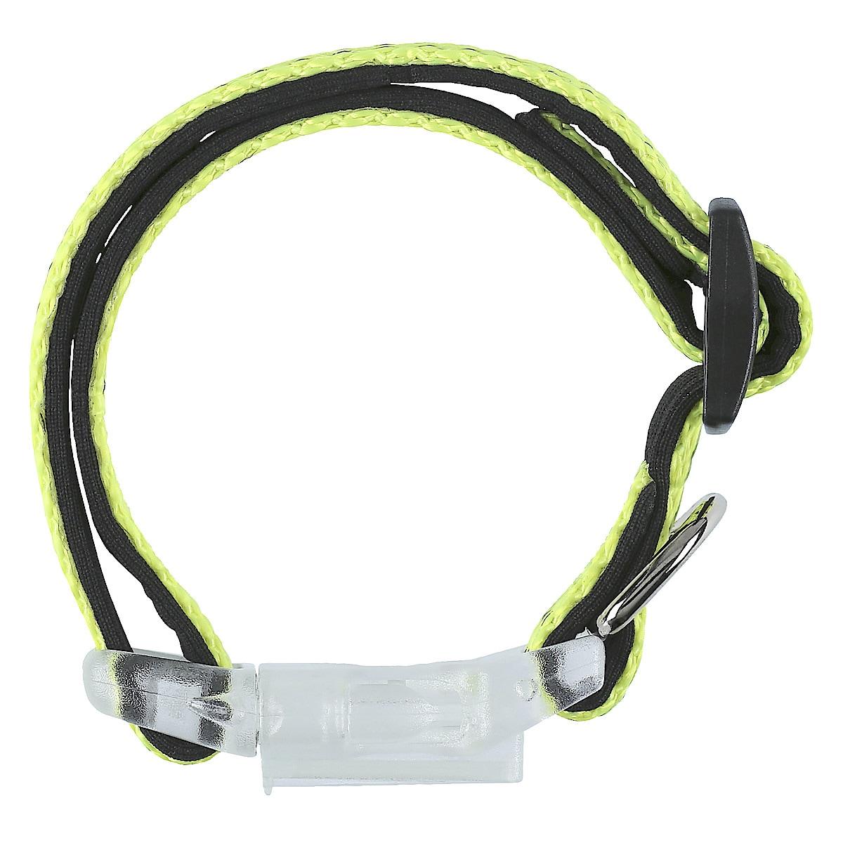 Hundehalsbånd 20-30 cm
