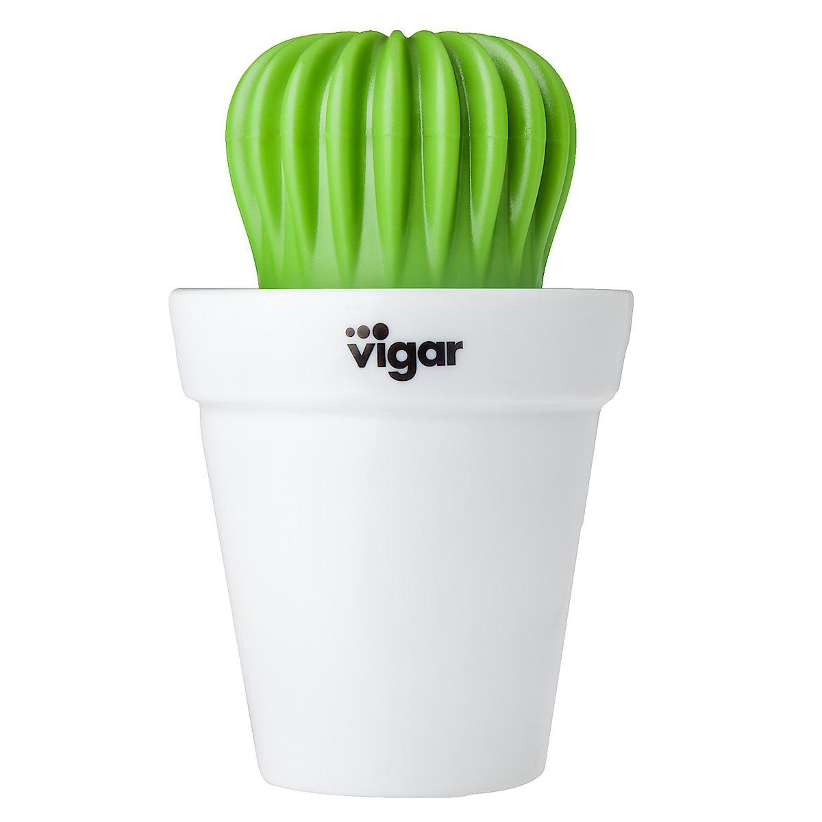 Diskborste Kaktus Vigar