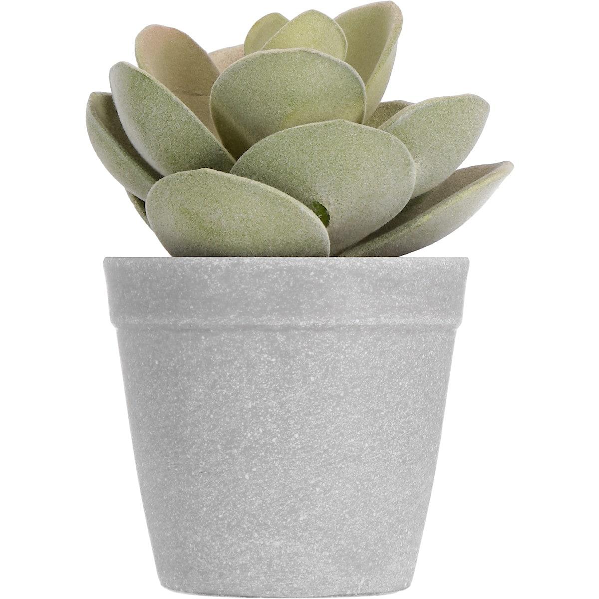 Lotus konstväxt 15 cm