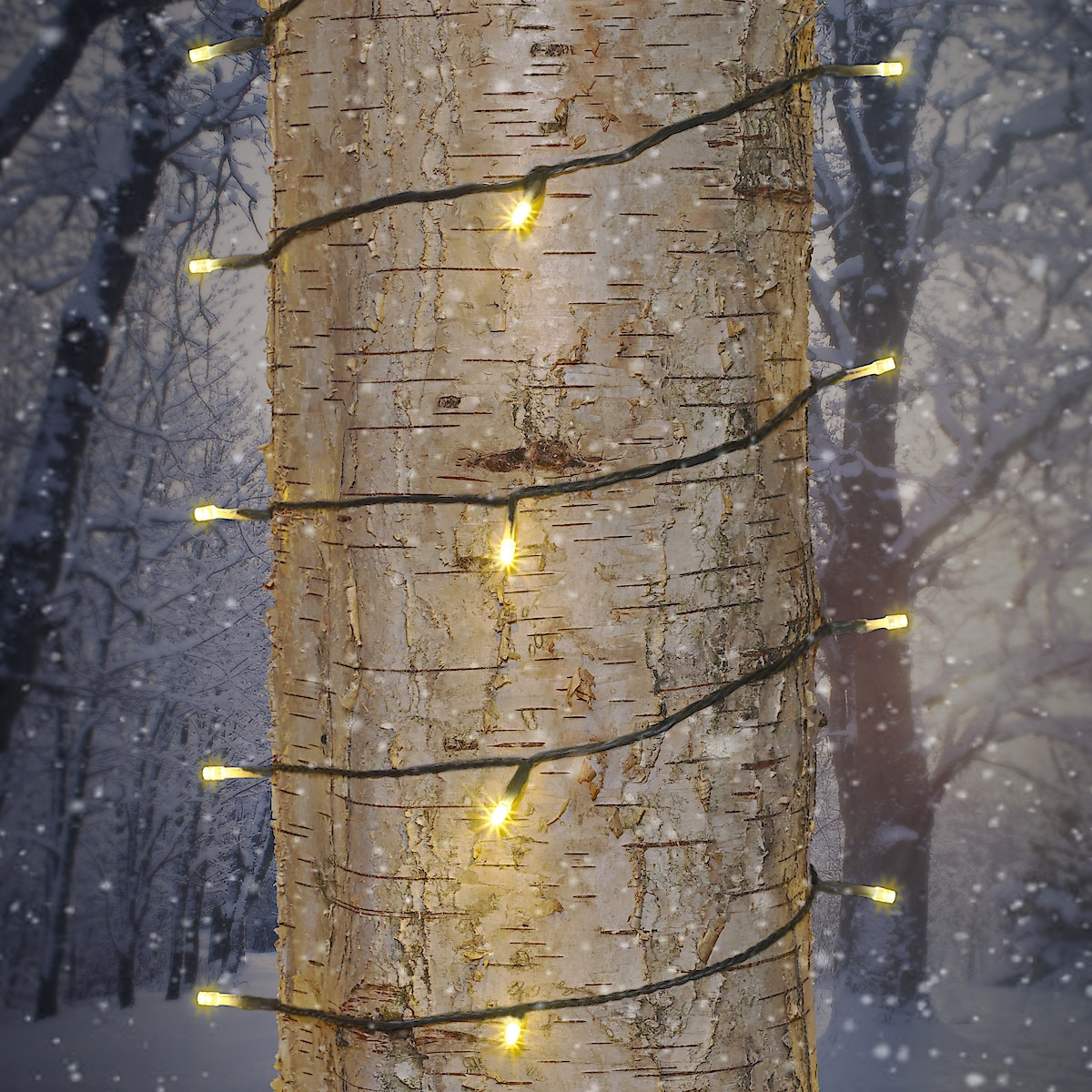 Northlight lysslynge med varmhvite LED-pærer, svart