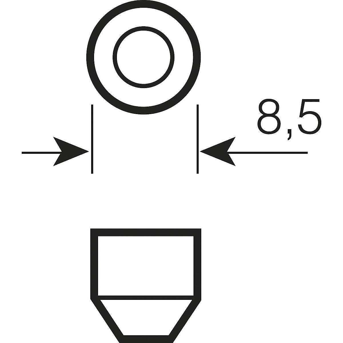 Osram SV8.5-8 Car Bulb