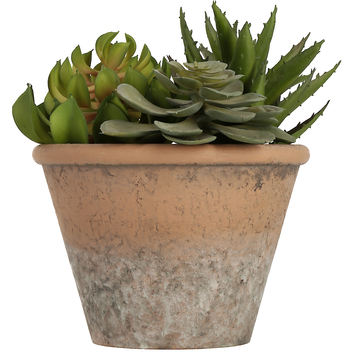 Artificial Succulent Plant Mix