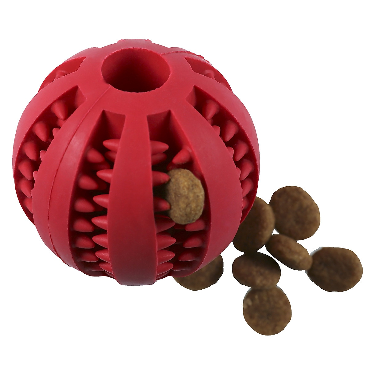 Aktivitetsboll för hund