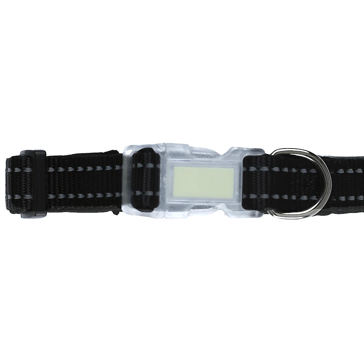 35–50 cm Dog Collar
